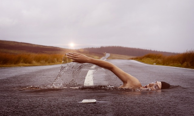 plavec na silnici